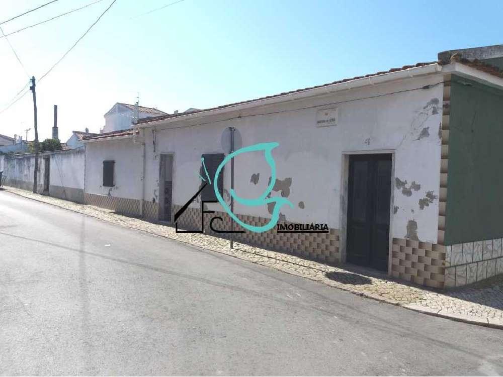 Salvaterra de Magos Salvaterra De Magos 别墅 照片 #request.properties.id#