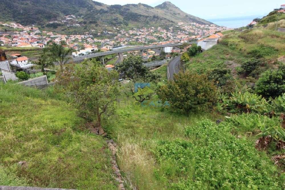 Machico Machico terrain photo 184892