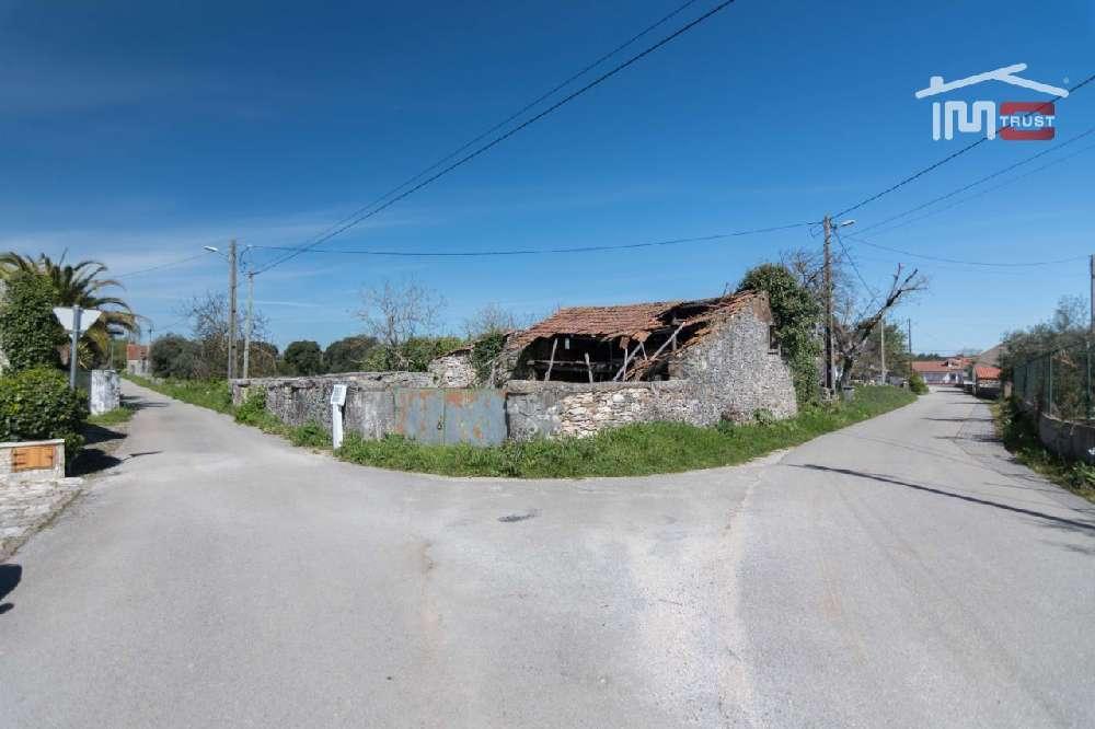 Fátima Ourém terrain picture 172091