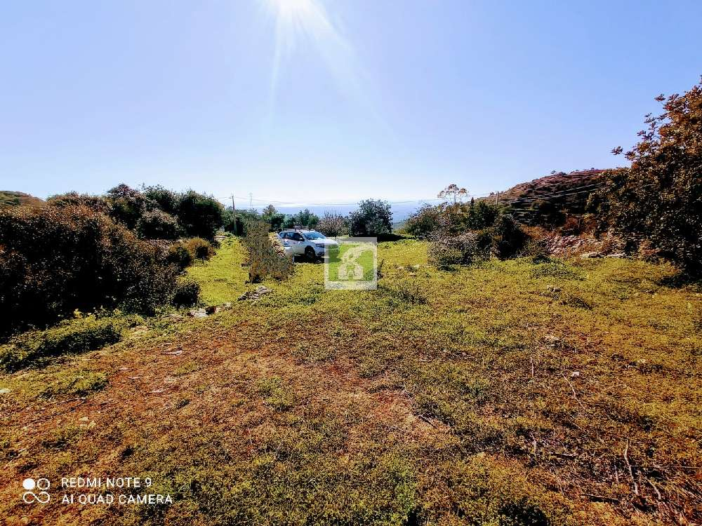 Faro Faro terrain picture 177371