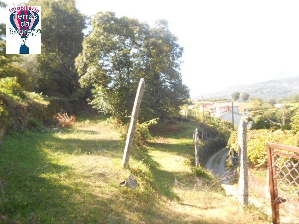 Arcos de Valdevez Arcos De Valdevez terrain picture 190446