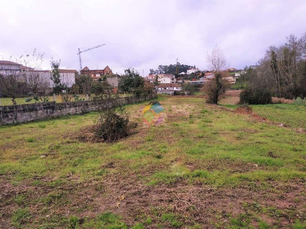 Santa Maria da Feira Santa Maria Da Feira terrain picture 178312