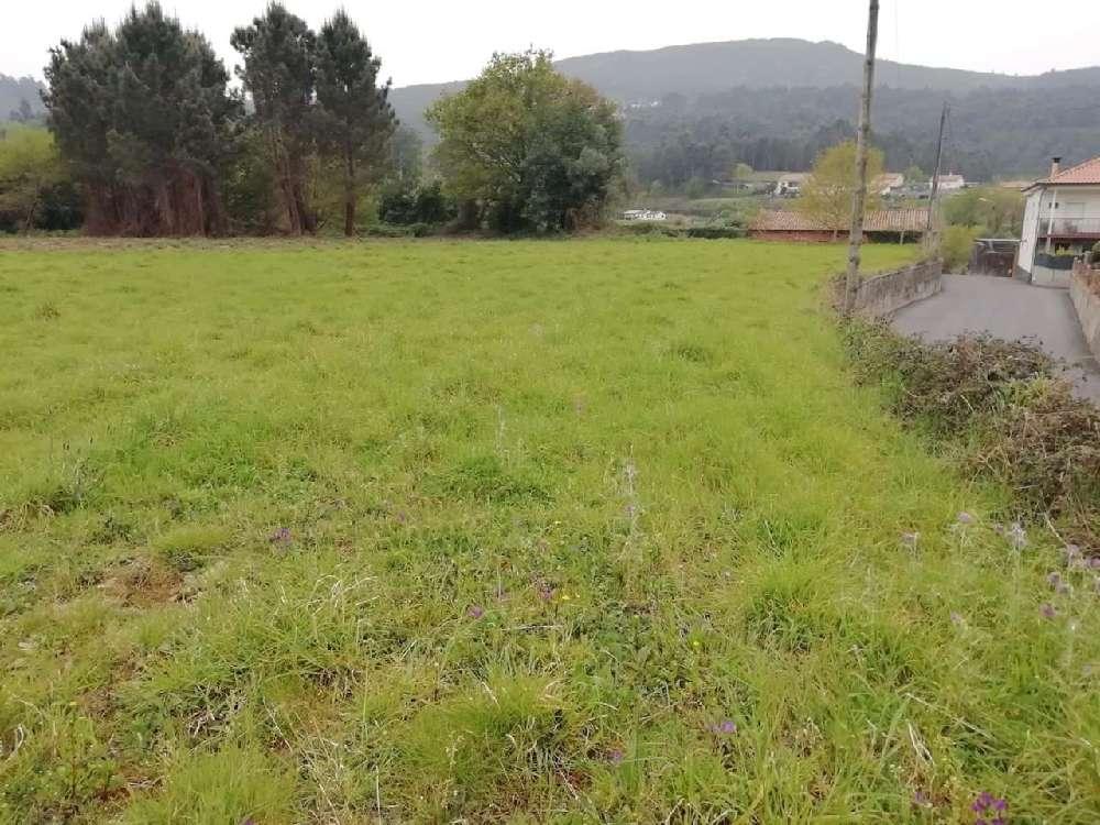 Cornes Vila Nova De Cerveira terrain picture 170121
