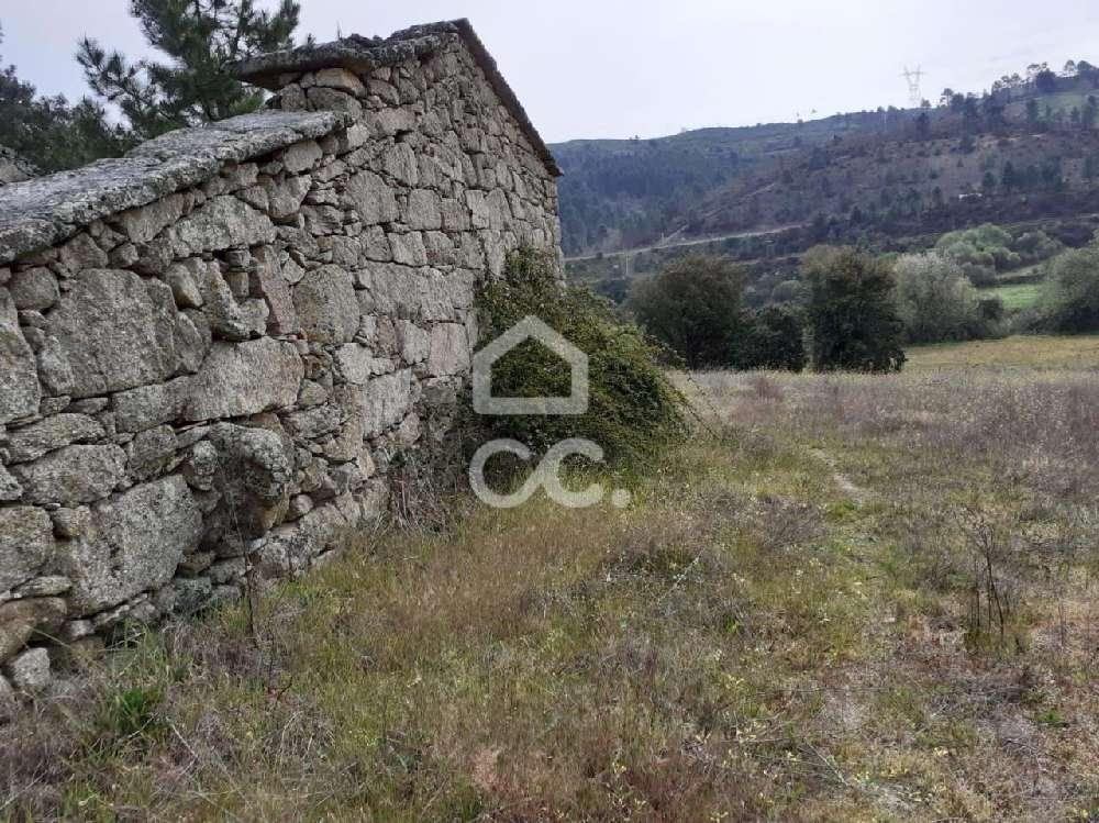 for sale terrain Anelhe Vila Real 1