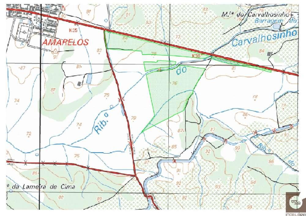Ferreira do Alentejo Ferreira Do Alentejo terrain photo 186417
