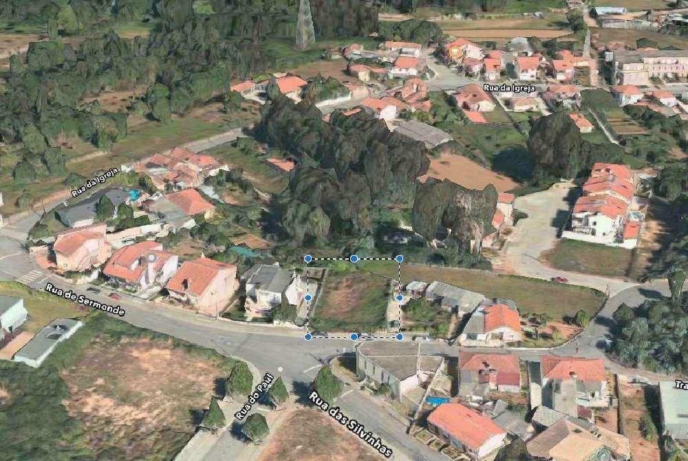 Grijó Vila Nova De Gaia terrain picture 168497