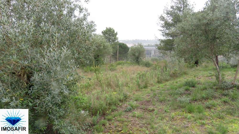 Carregueiros Tomar Grundstück Bild 172363