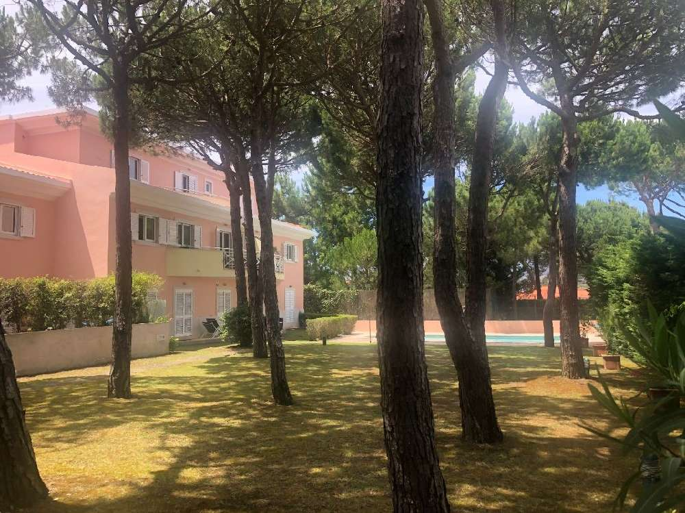 Cascais Cascais apartment picture 181498
