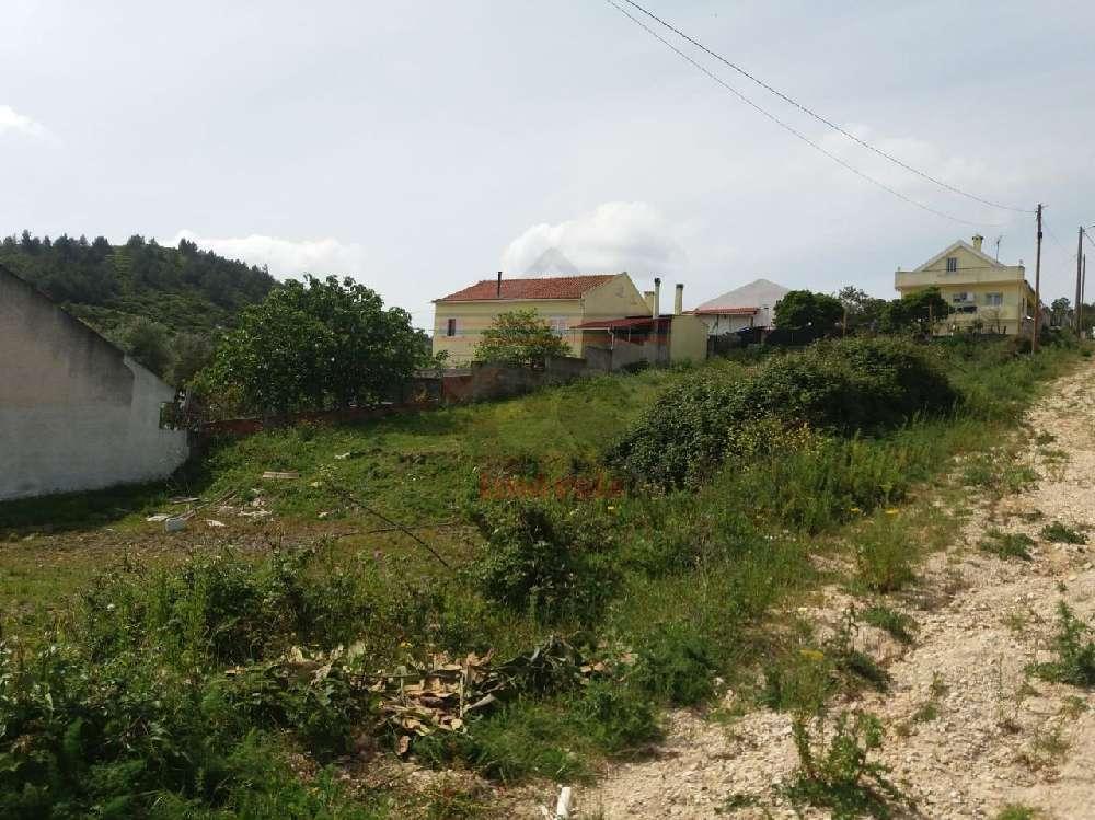 Alverca do Ribatejo Vila Franca De Xira terrain picture 171582