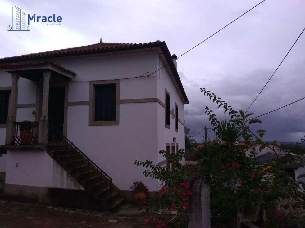Castelo Branco Castelo Branco house picture 186308