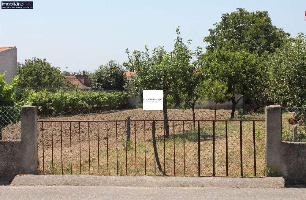 Santa Comba Dão Santa Comba Dão 土地 照片 #request.properties.id#