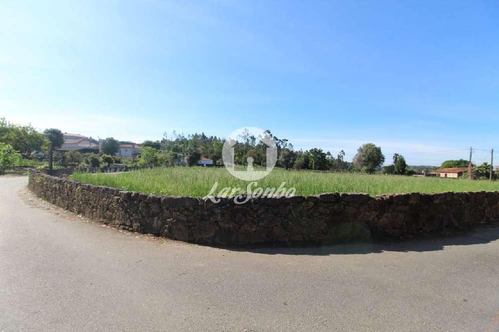 Ucha Barcelos terrain picture 172268