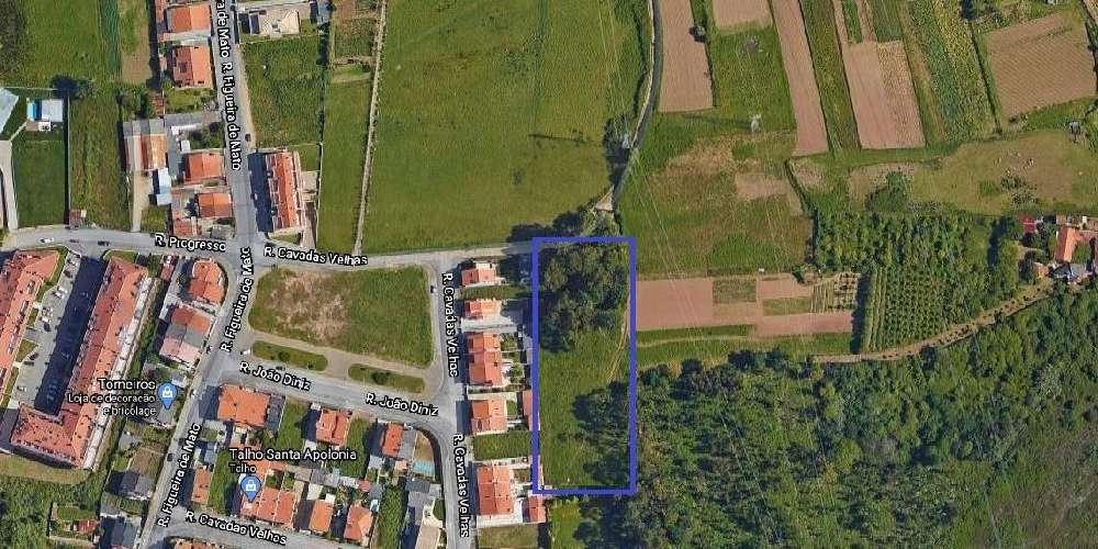 Perosinho Vila Nova De Gaia terrain picture 168493