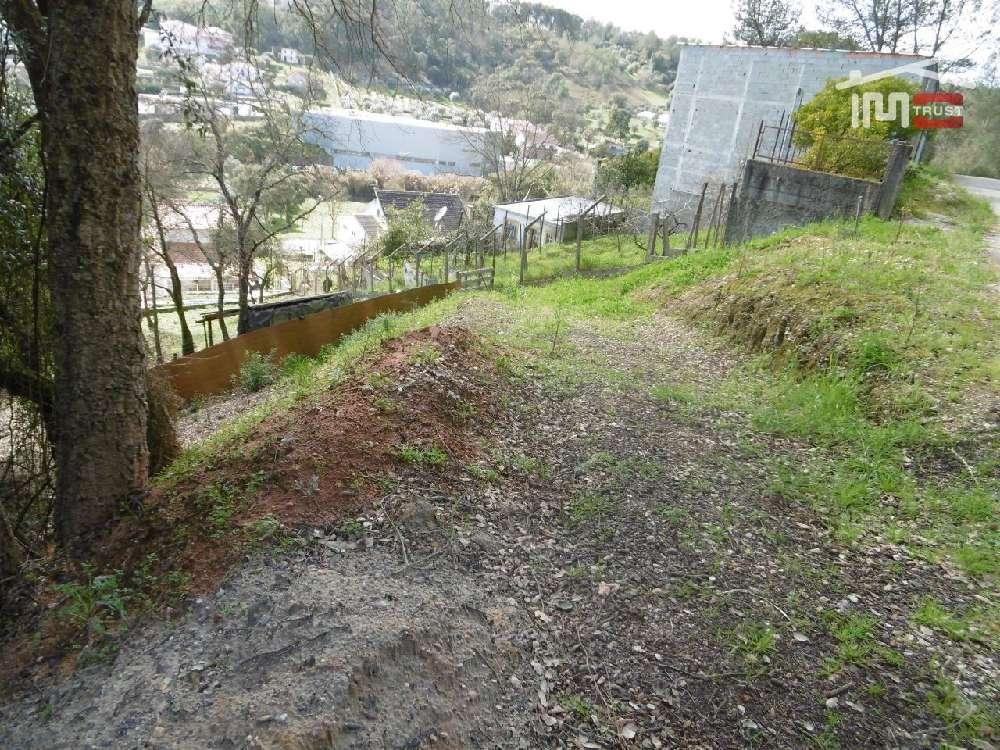 Matas Ourém terrain picture 172053