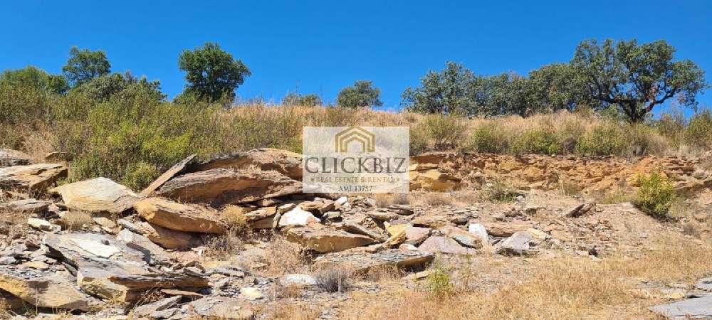 Reguengos de Monsaraz Reguengos De Monsaraz terrain photo 177714