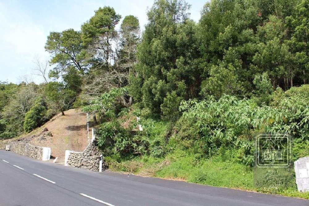 Terra Chã Angra Do Heroísmo terrain picture 169119