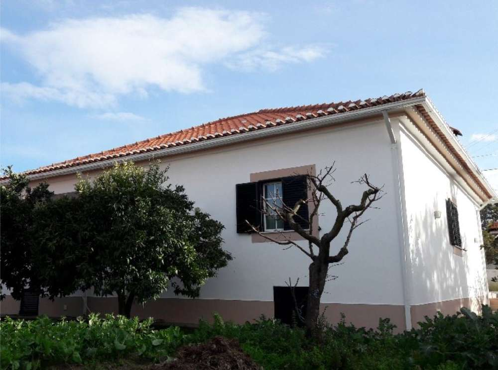 Santo António das Areias Marvão house picture 171330