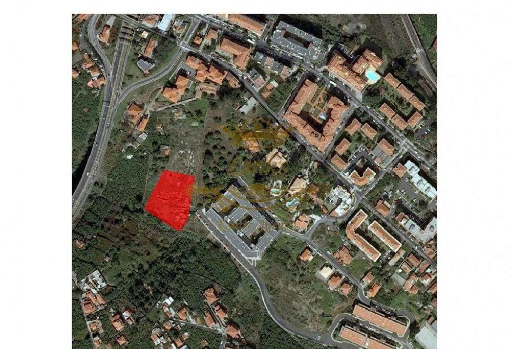 Funchal Funchal terrain picture 185248