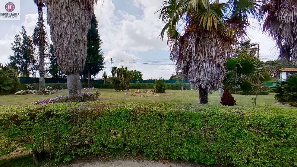 Alcochete Alcochete Villa Bild 181466