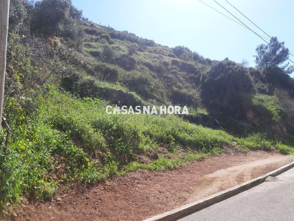 Famões Odivelas terrain picture 172018