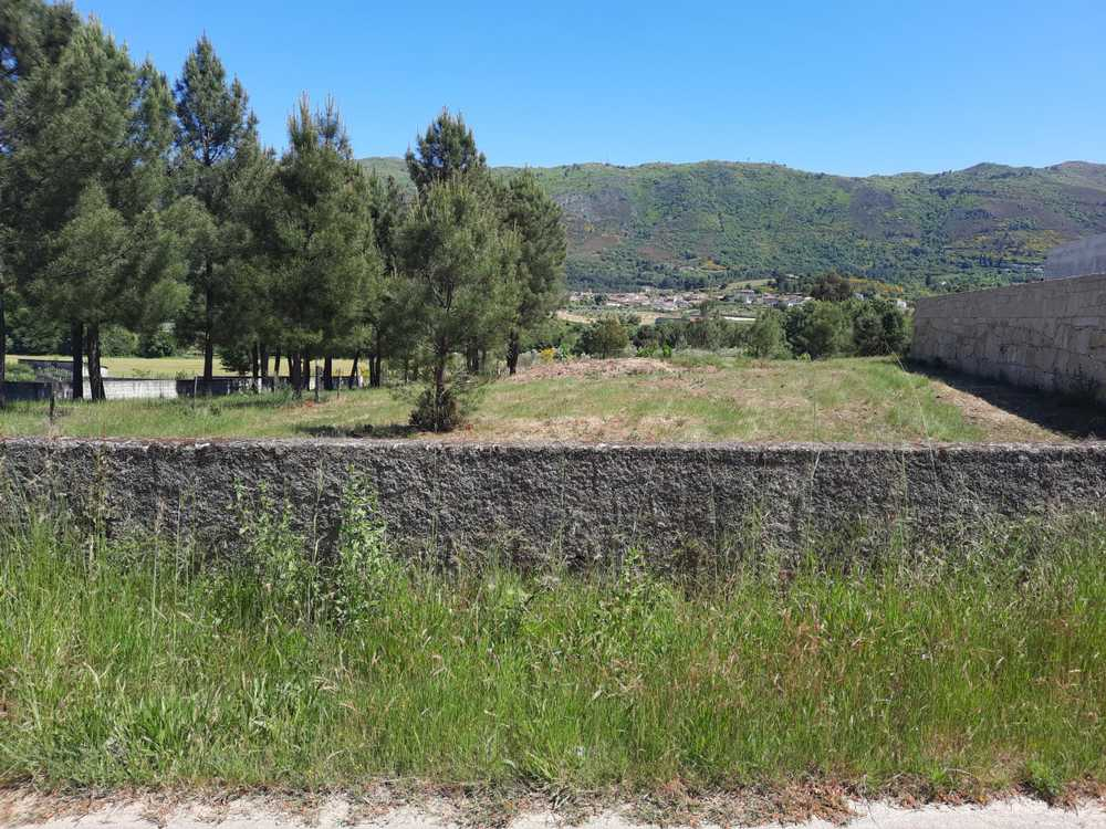 Vila Real Vila Real terrain picture 173253