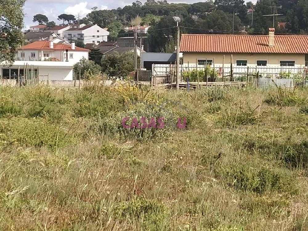 Leiria Leiria terrain picture 177023
