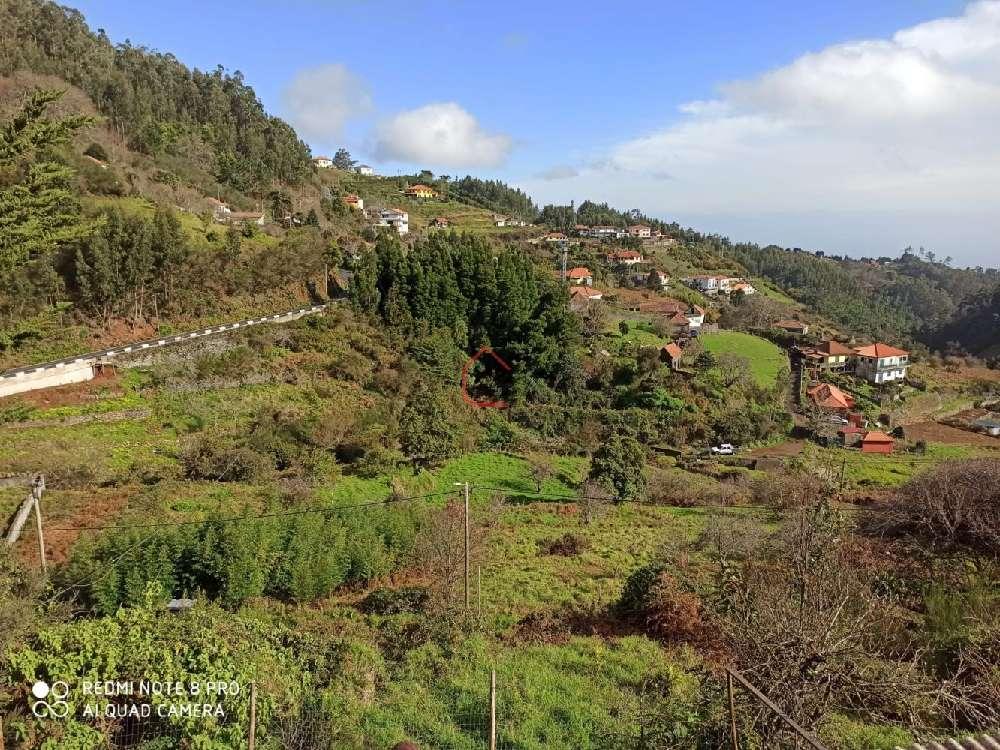 Santa Cruz Santa Cruz terrain picture 186092
