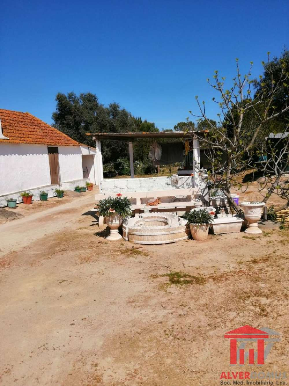 Coruche Coruche villa photo 174109