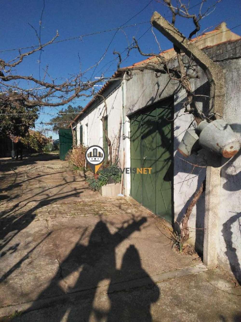 Idanha-A-Nova Idanha-A-Nova house picture 183843