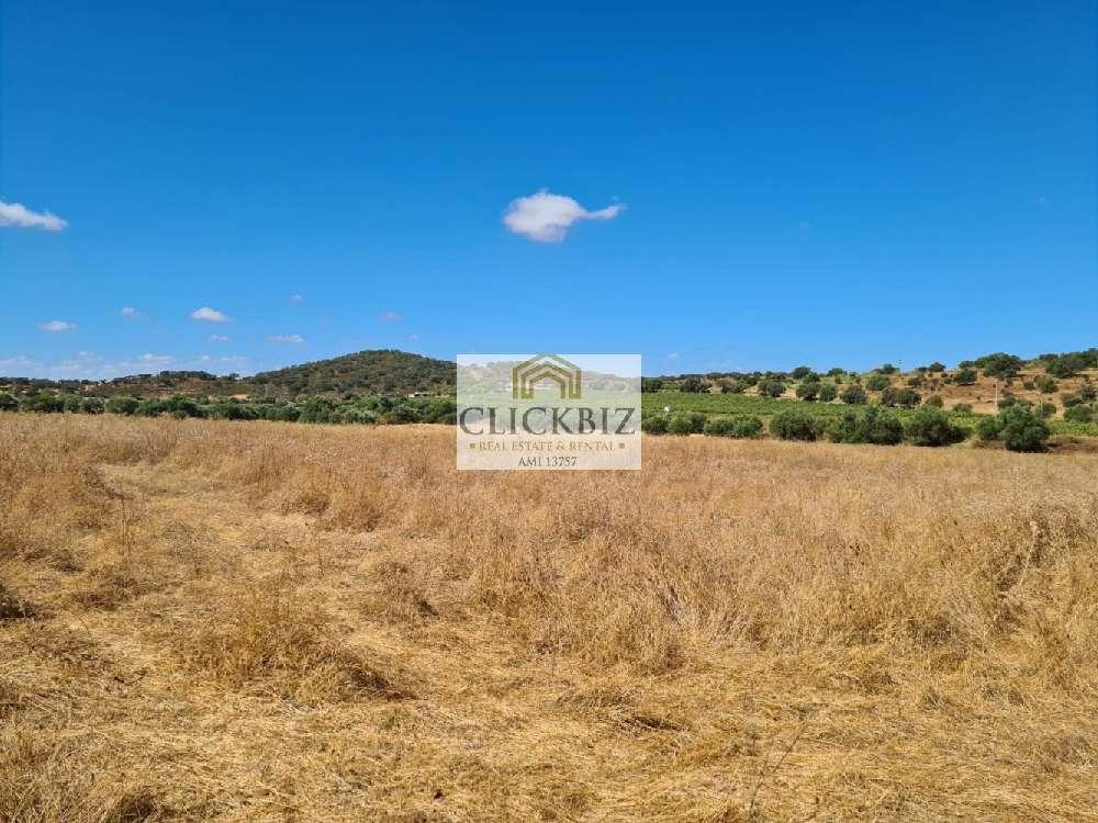 Reguengos de Monsaraz Reguengos De Monsaraz terrain photo 177731