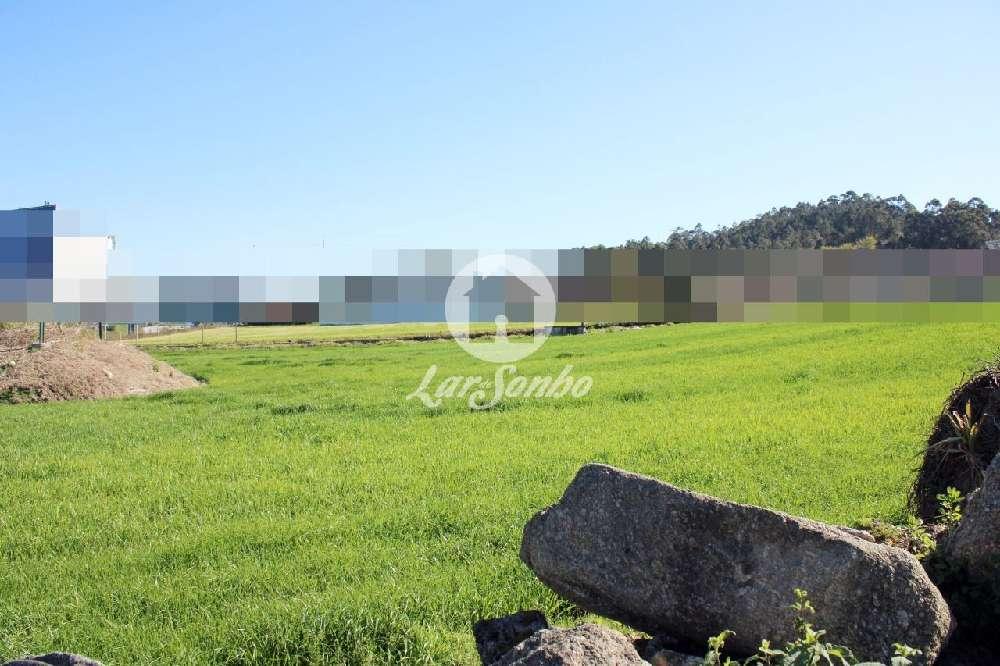 Alvelos Barcelos terrain picture 172262