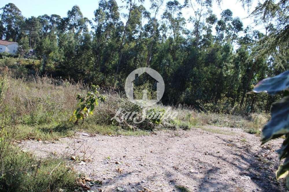 Pousa Barcelos terrain picture 172252