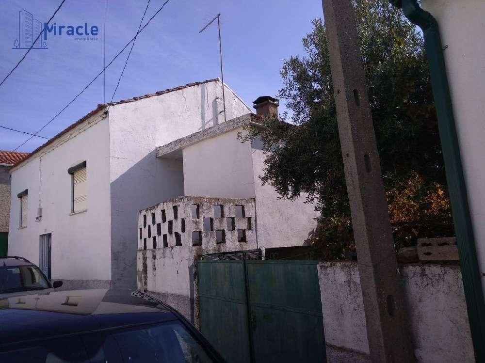Castelo Branco Castelo Branco house picture 186302