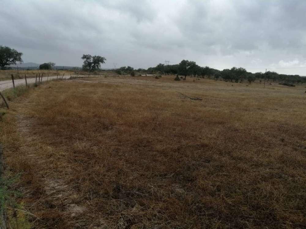Crato Crato terrain photo 171394