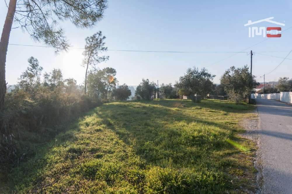 Malaguarda Ourém terrain picture 172044