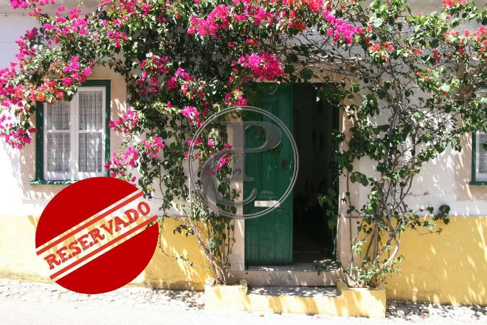 Cartaxo Cartaxo villa picture 194220