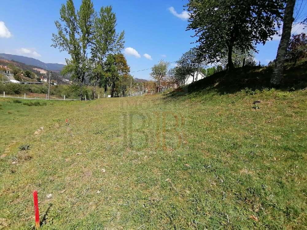 Basto Cabeceiras De Basto terrain picture 193751