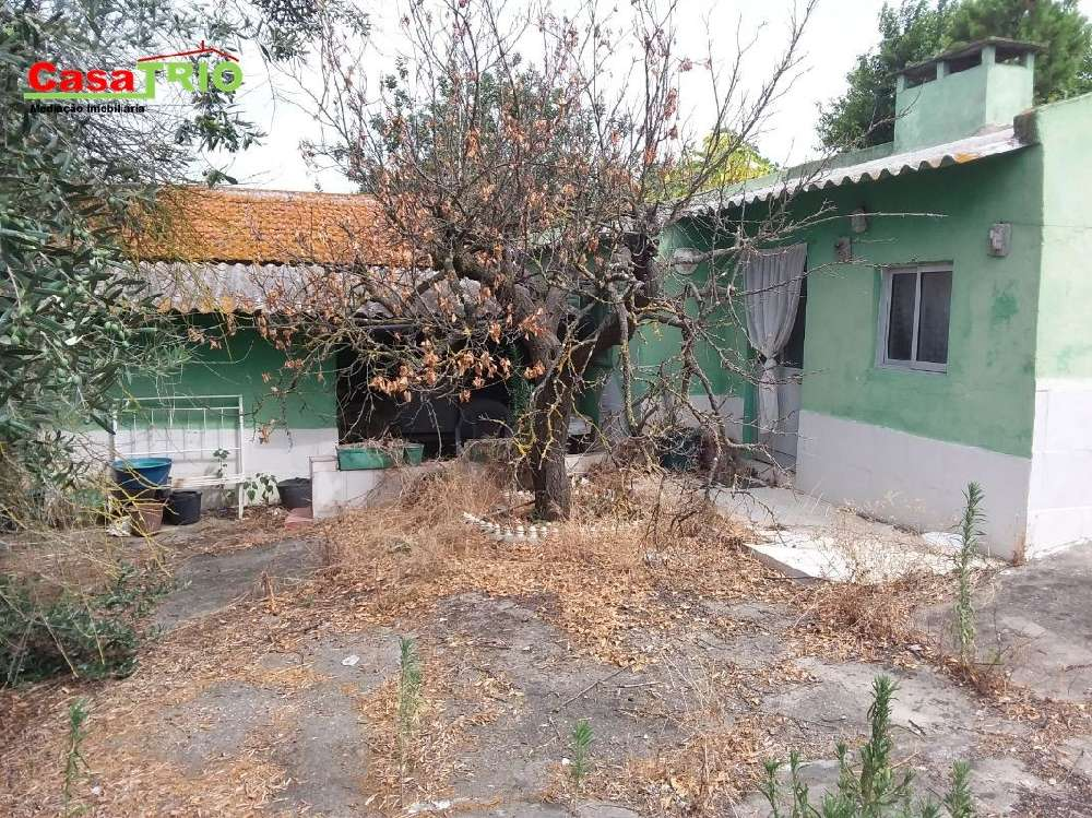 Almeirim Almeirim terreno foto #request.properties.id#