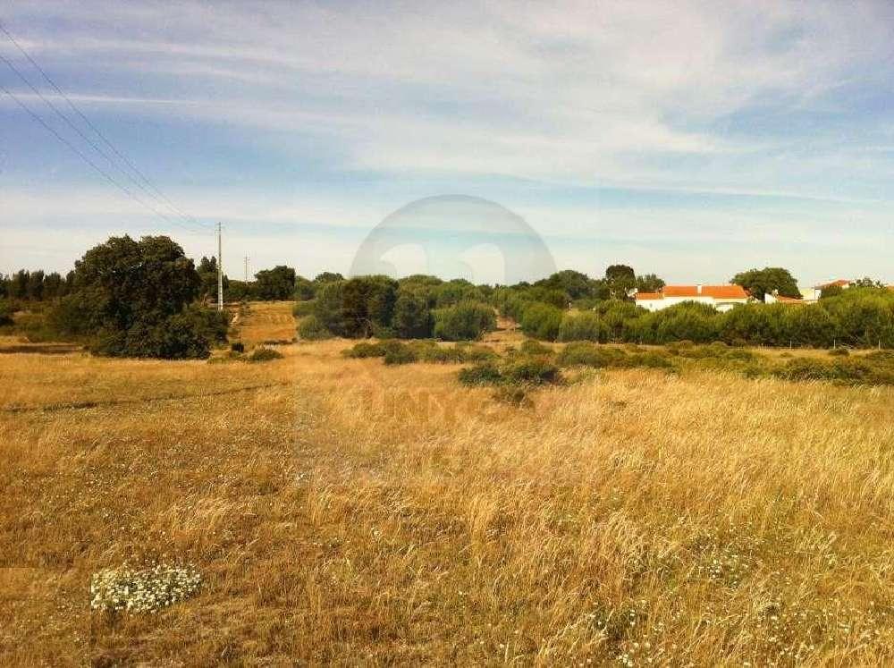 Montijo Montijo terrain picture 194380