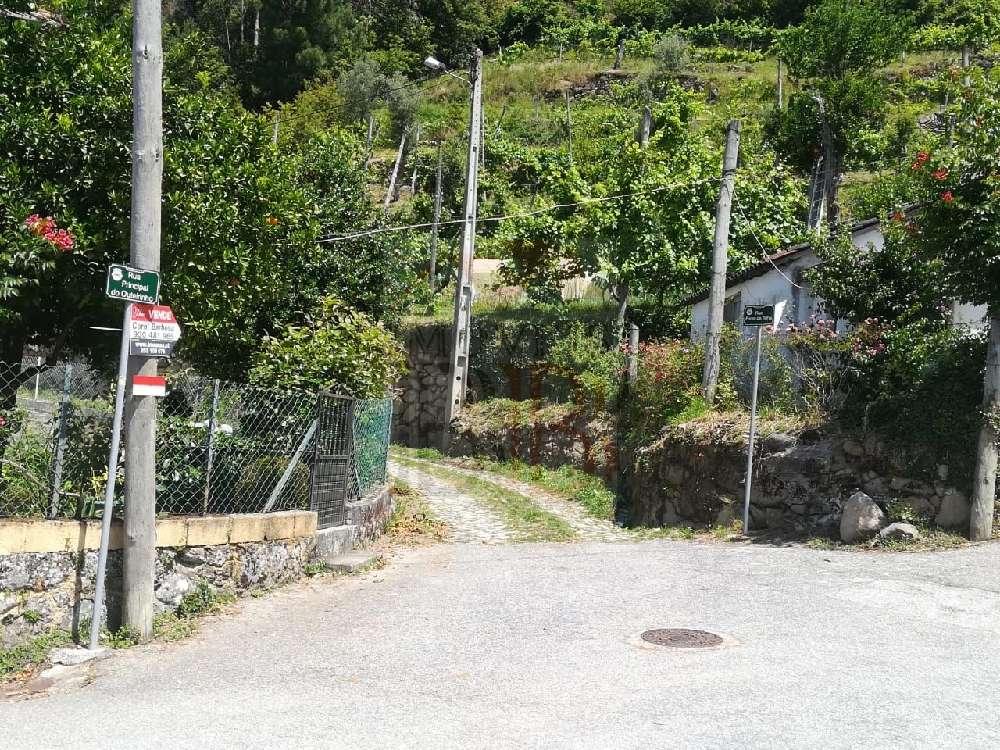Ribeira de Pena Ribeira De Pena 土地 照片 #request.properties.id#
