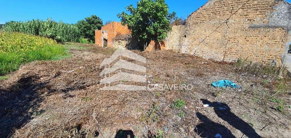 Aveiro Aveiro terrain picture 193356
