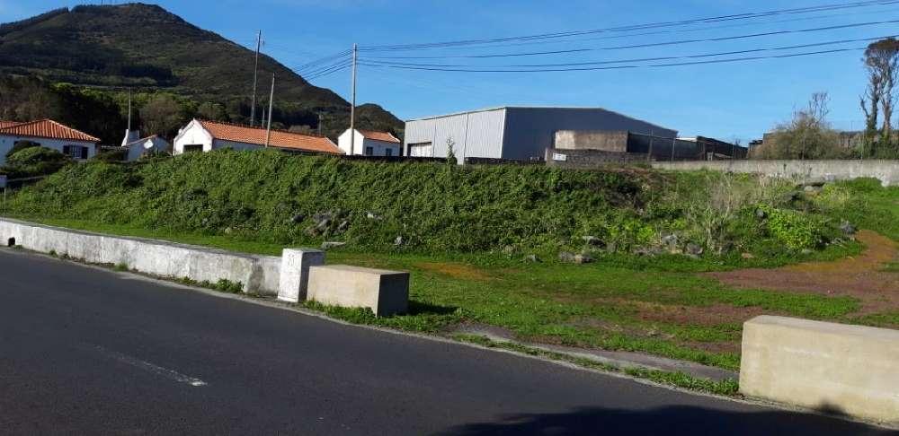 Horta Horta terrain picture 194071