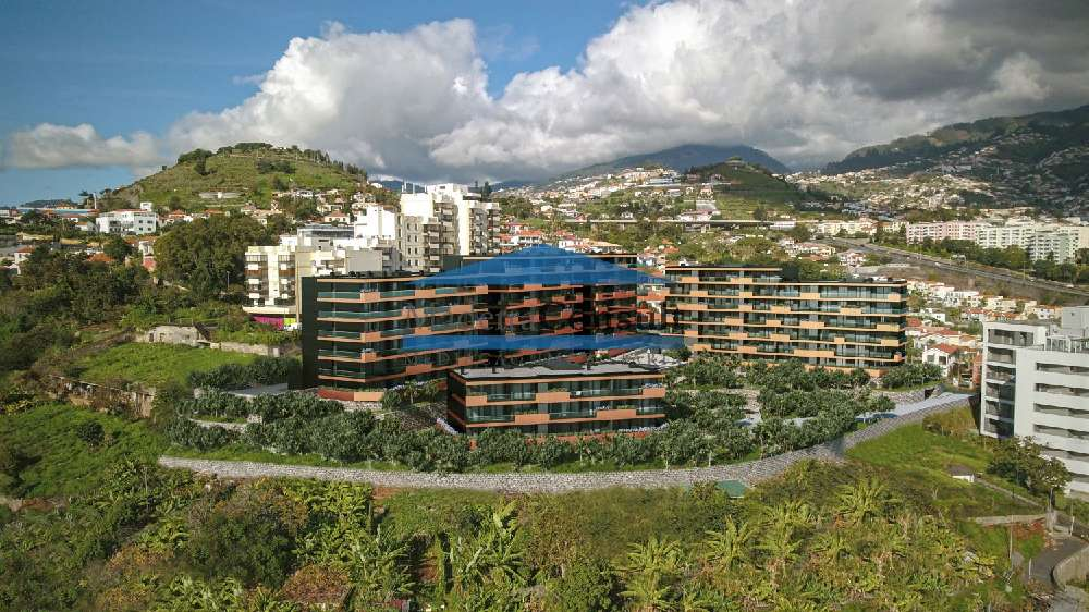 Funchal Funchal apartment picture 192513