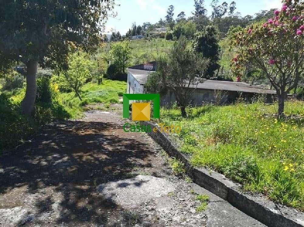 Santa Porto Moniz 别墅 照片 #request.properties.id#