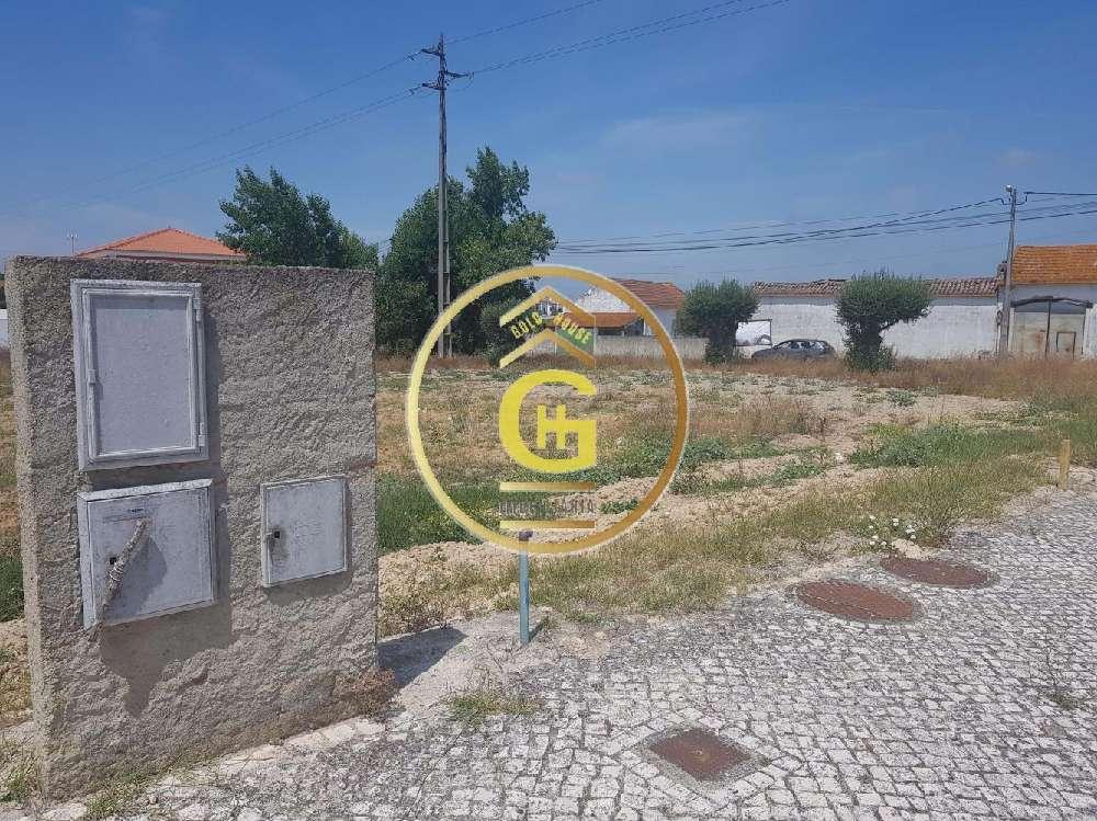 Cartaxo Cartaxo terreno foto #request.properties.id#