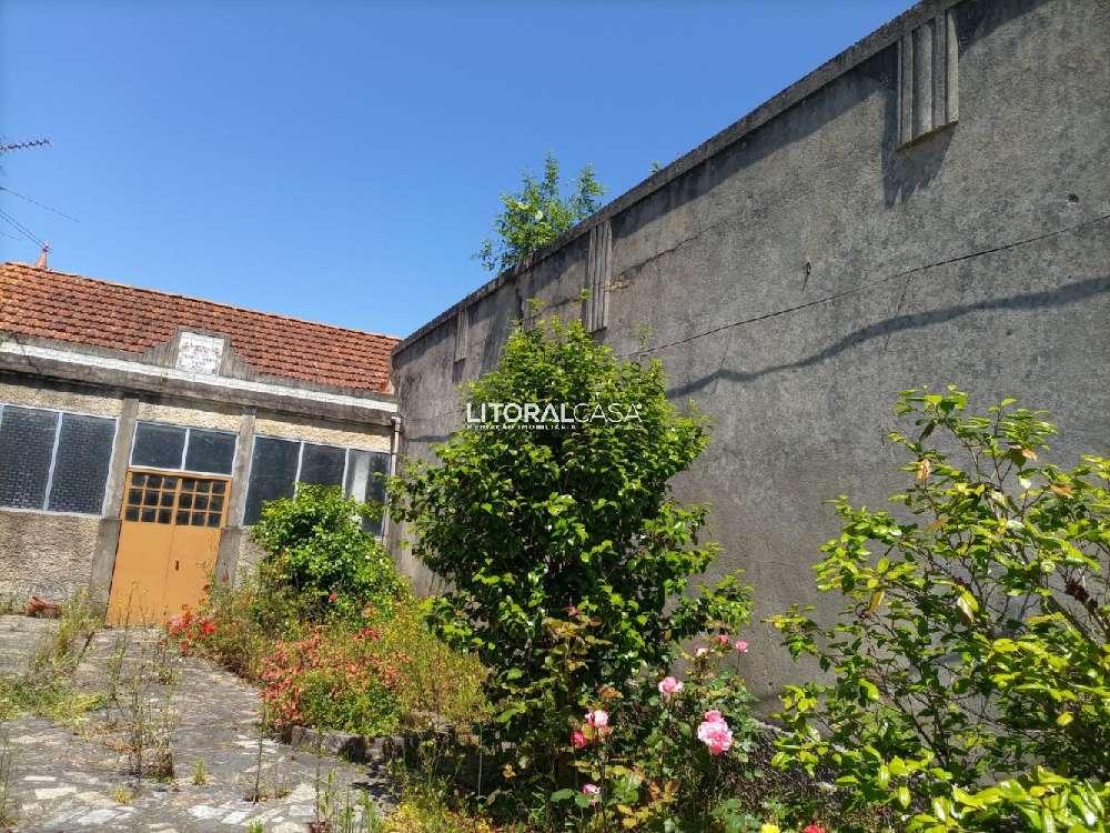 Oliveira do Bairro Oliveira Do Bairro maison photo 192496