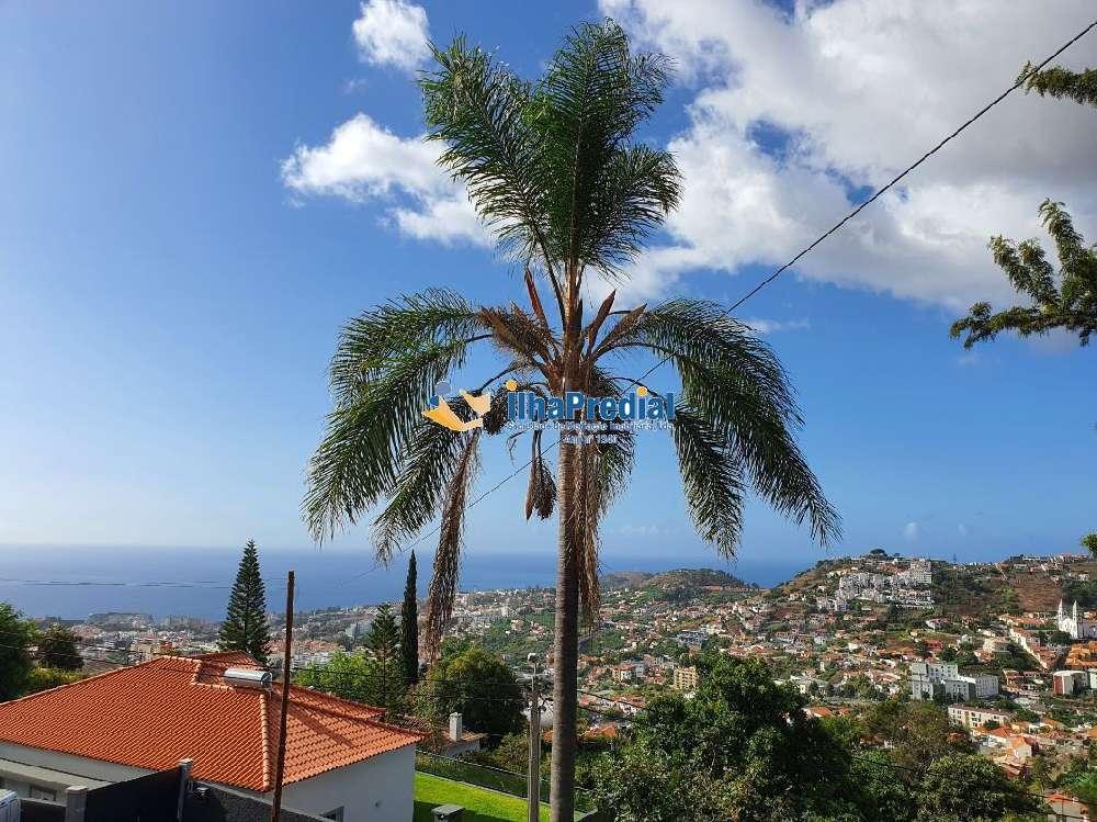 Funchal Funchal 别墅 照片 #request.properties.id#