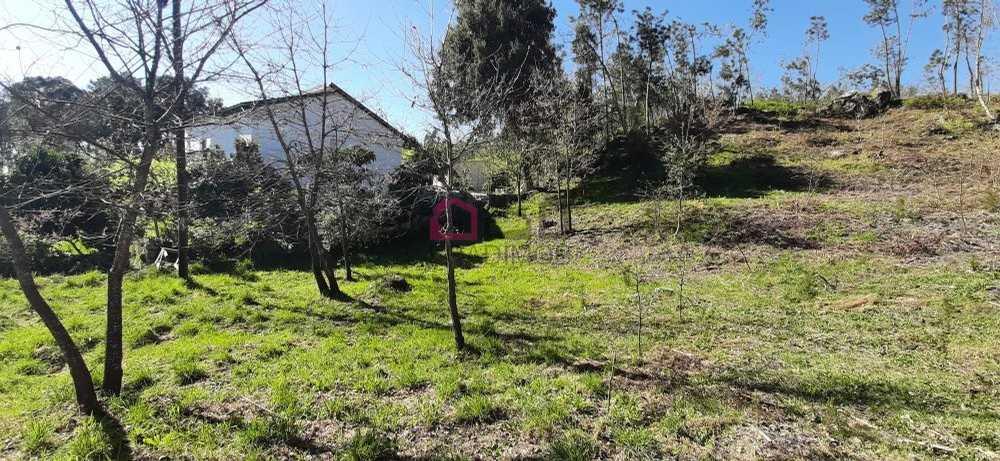 Pinho São Pedro Do Sul 土地 照片 #request.properties.id#
