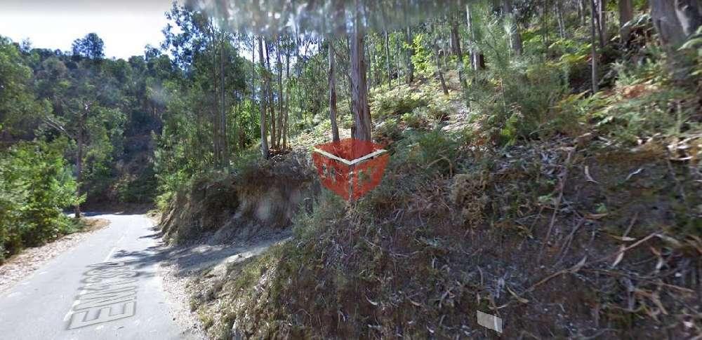 Póvoa de Lanhoso Póvoa De Lanhoso Grundstück Bild 192521
