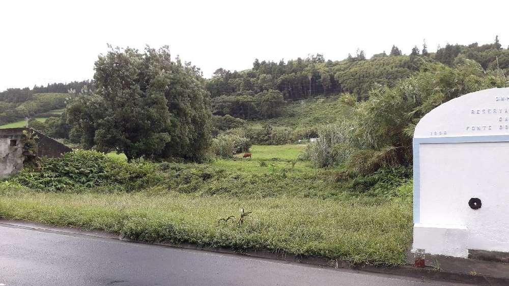 Horta Horta terrain picture 194069